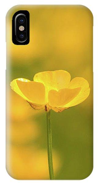 Butter Wouldnt Melt IPhone Case