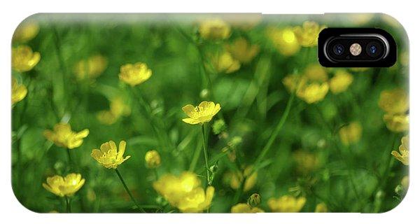 Buttercup Field- Butler Creek Trail- Gresham- Oregon IPhone Case