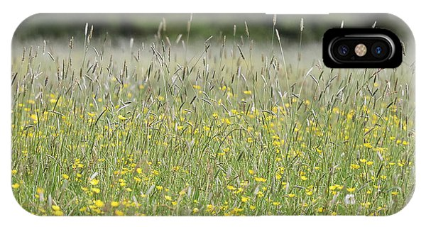 Buttercup Meadow IPhone Case