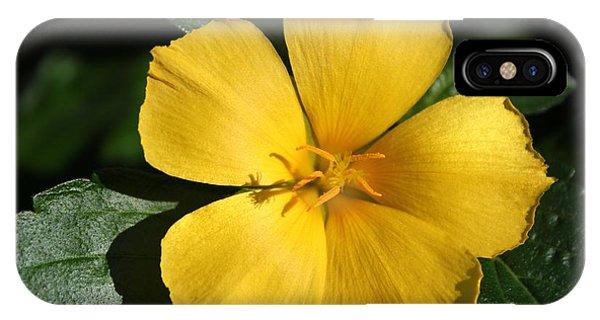 Buttercup Sunshine IPhone Case