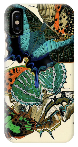 Chrysalis iPhone Case - Butterflies, Plate-13  by Painter of the 19th century