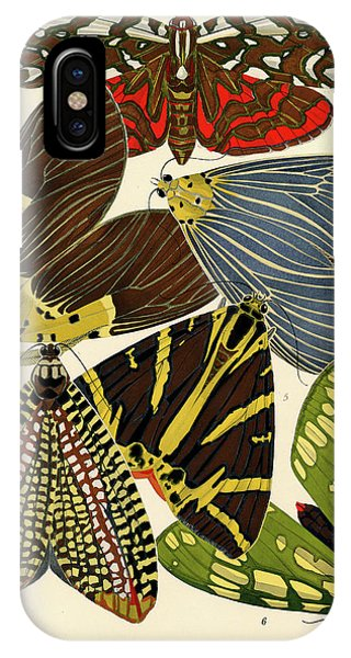 Chrysalis iPhone Case - Butterflies, Plate-14 by Painter of the 19th century