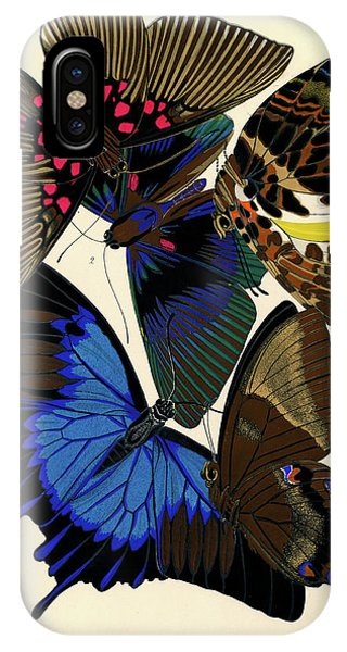 Chrysalis iPhone Case - Butterflies, Plate-16 by Painter of the 19th century