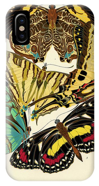 Chrysalis iPhone Case - Butterflies, Plate-5 by Painter of the 19th century