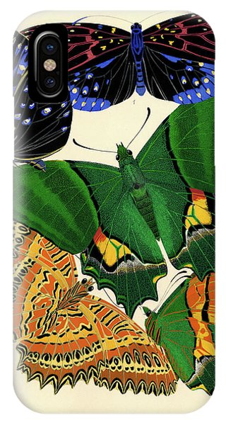 Chrysalis iPhone Case - Butterflies, Plate-6 by Painter of the 19th century