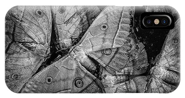 Butterfly #2056 Bw IPhone Case