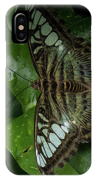 Butterfly 4 IPhone Case