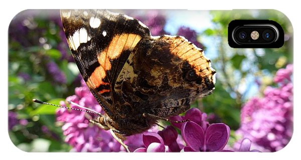 Butterfly 7 IPhone Case
