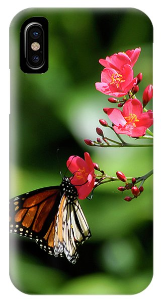 Butterfly And Blossom IPhone Case