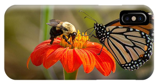 IPhone Case featuring the photograph Butterfly And Bumble Bee by Willard Killough III