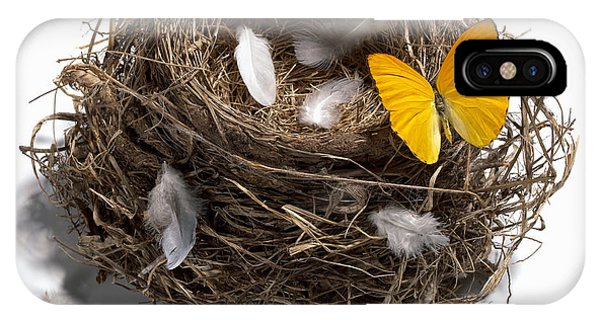 Insect iPhone Case - Butterfly And Nest by Tony Cordoza