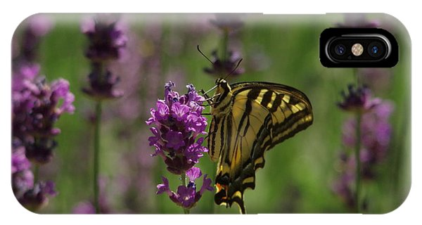 Little Things iPhone Case - Butterfly Balancing Act by Jeff Swan