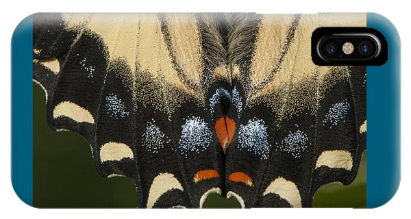 Butterfly Colors IPhone Case