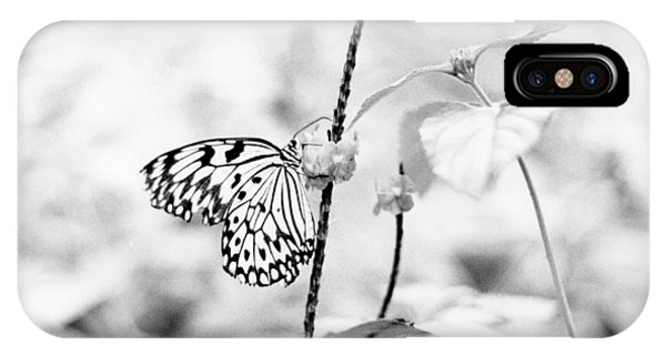 Butterfly Eatting  IPhone Case