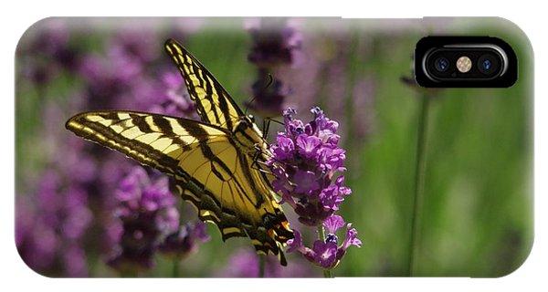 Little Things iPhone Case - Butterfly In Lavender by Jeff Swan