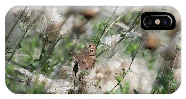 Butterfly In Puffy Seed Heads IPhone Case