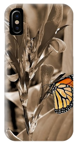 Butterfly In Sepia IPhone Case