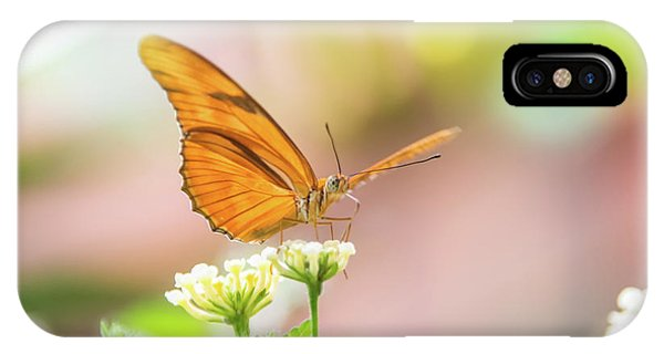 Butterfly - Julie Heliconian IPhone Case