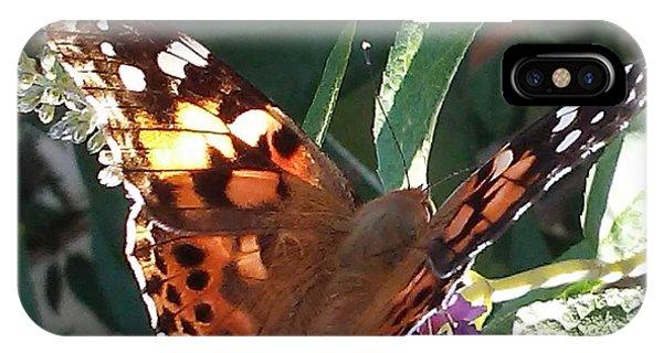 Butterfly Landing IPhone Case