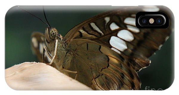Butterfly Macro IPhone Case