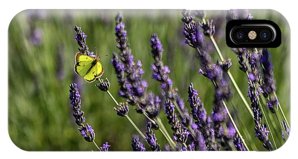 Butterfly N Lavender IPhone Case