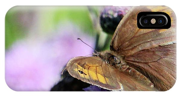 Butterfly Photograph  IPhone Case