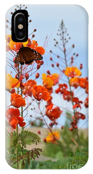 Butterfly On Bird Of Paradise IPhone Case
