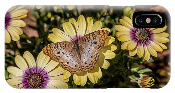 Butterfly On Blossoms IPhone Case