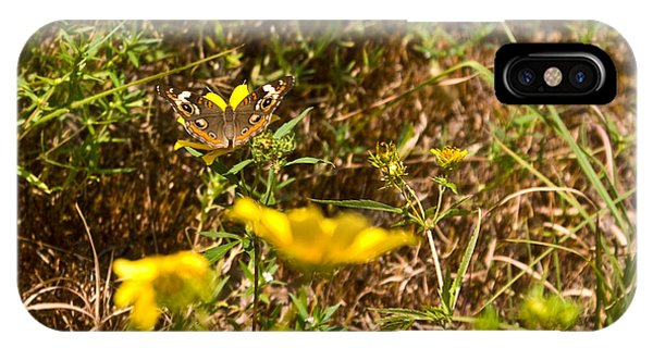 Crossville iPhone X Case - Butterfly On Flower by Douglas Barnett