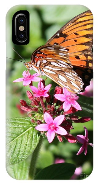 Agraulis Vanillae iPhone Case - Butterfly On Pink Pentas by Carol Groenen