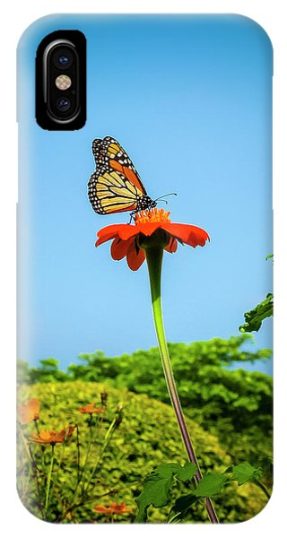 Butterfly Perch IPhone Case