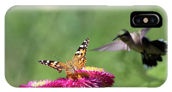 IPhone Case featuring the photograph Butterfly Vs Hummingbird 1 by Brian Hale