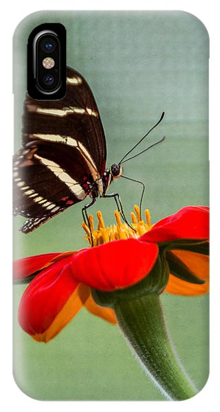 Butterfly Zebra Longwing On Zinnia IPhone Case