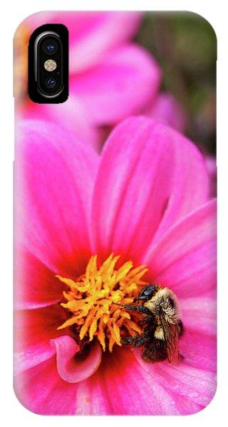 Buzz IPhone Case