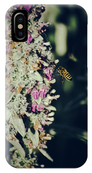 IPhone Case featuring the photograph Buzzing In My Lamb's Ear by Jason Coward