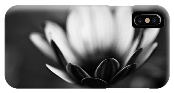 Blossom iPhone Case - #bw #closeup #petals #someyearsago by Mandy Tabatt