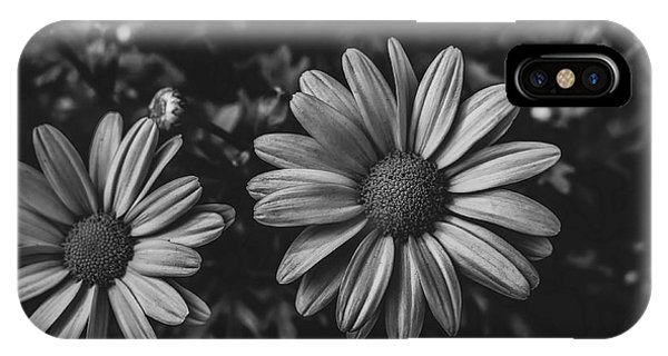 Bw Daisies IPhone Case