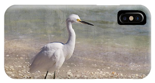 Egrets iPhone Case - By The Sea by Kim Hojnacki