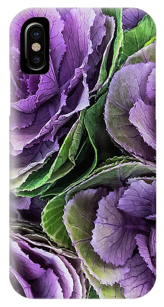 Cabbage Flower IPhone Case