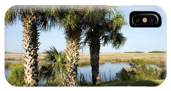 Wakulla iPhone Case - Cabbage Palmetto Trees by Inga Spence