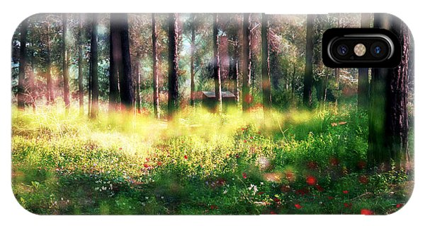 Cabin In The Woods In Menashe Forest IPhone Case