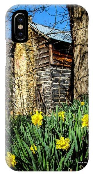 Cabin Spring IPhone Case