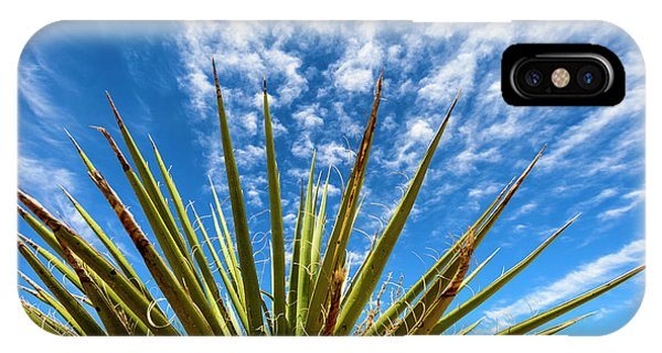Cactus And Blue Sky IPhone Case