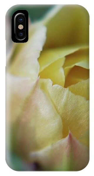 Cactus Beauty IPhone Case