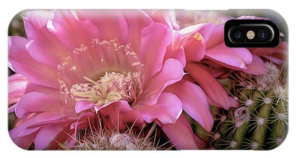 Cactus Bloom IPhone Case
