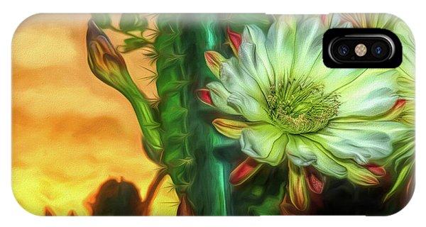Cactus Flower At Sunrise IPhone Case
