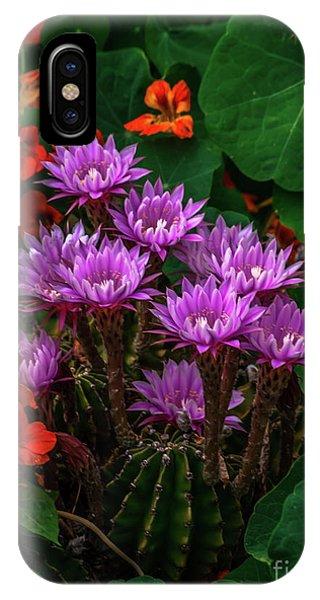 Cactus Flower Sonoma County IPhone Case