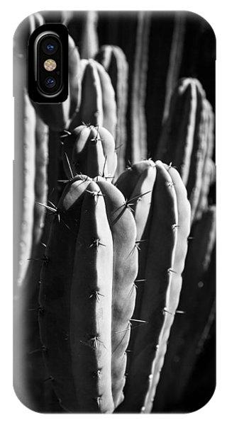 Cactus IIi IPhone Case
