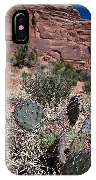 Cactus In Arches Nat'l Park IPhone Case