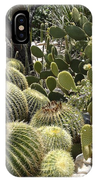 Cactus Life In Arizona IPhone Case